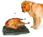 TurkeyBaster