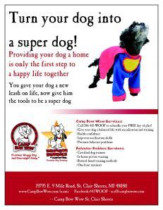 super dog flyer-page1
