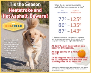 DogTread-Dog-Treadmill-Hot-Weather-Health-Tips