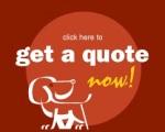 Pet quote Pic