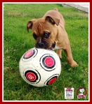 huma with soccer ball