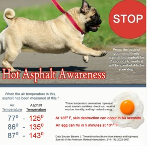Hot-Asphalt-Awareness1