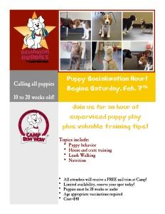 puppy socialization flyer new 2-7-15