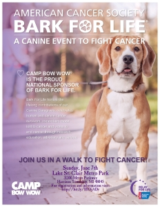 Bark for Life Flyer - CBW SCS
