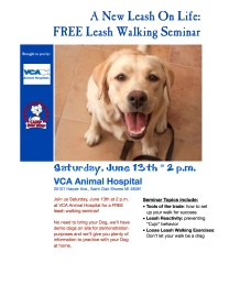 leash walking seminar flyer