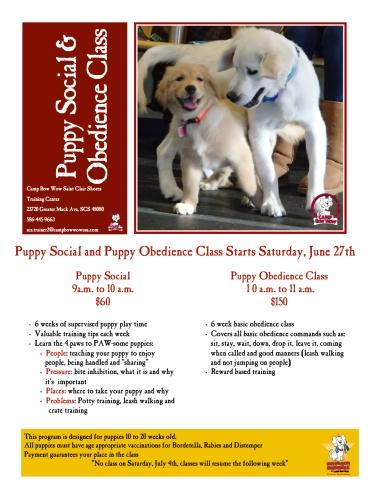 puppy social 6_27