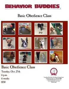 Training Class Flyer