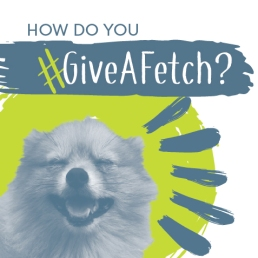 #giveafetch2017